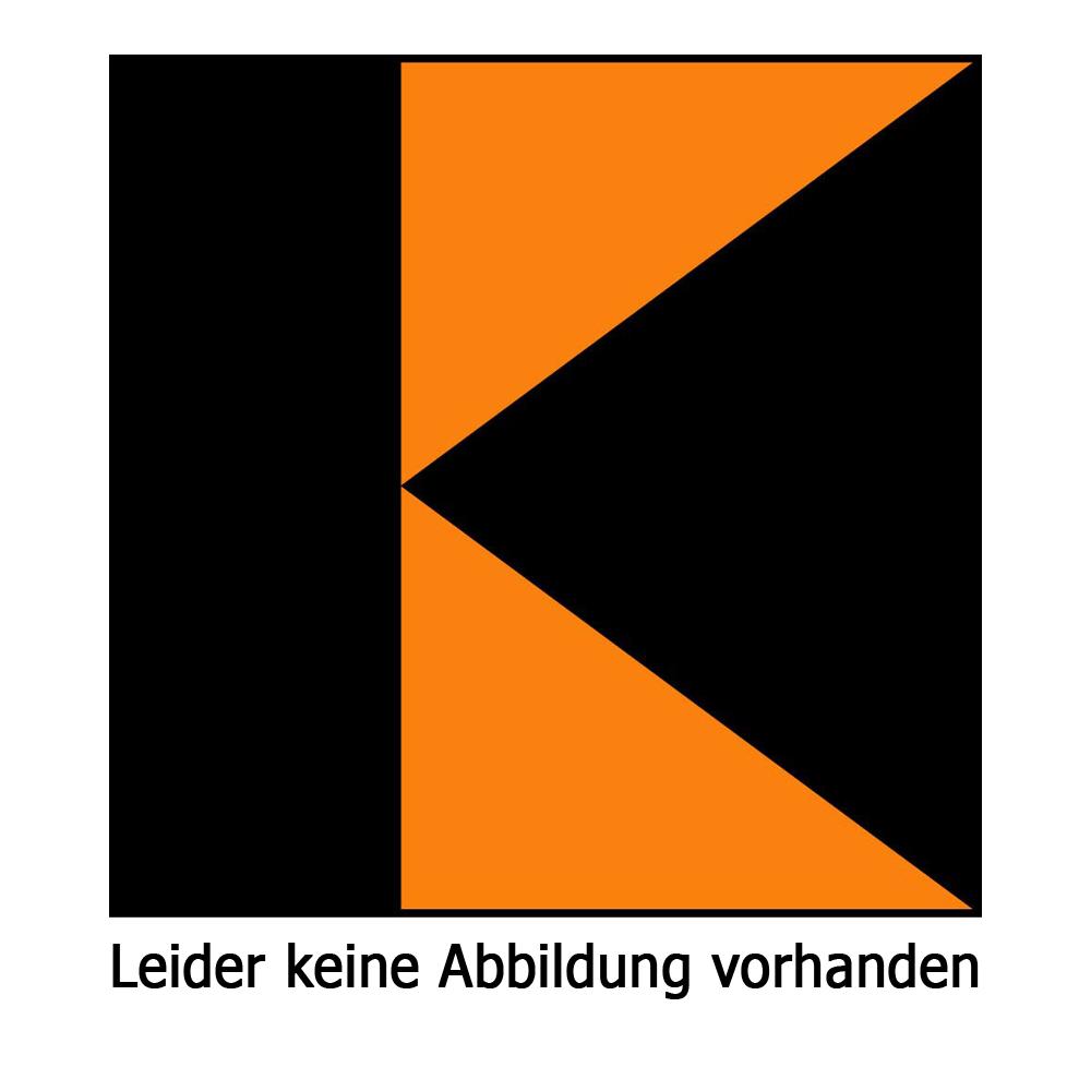 Kolping Fahne weis/orange 150x400 cm